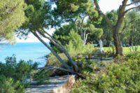 Punta Licosa (10)