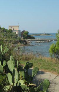Punta Licosa (15)