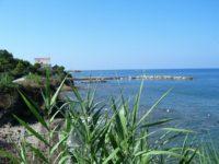 Punta Licosa (5)